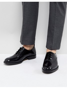 Zign Leather Lace Up Shoes In Black - Black