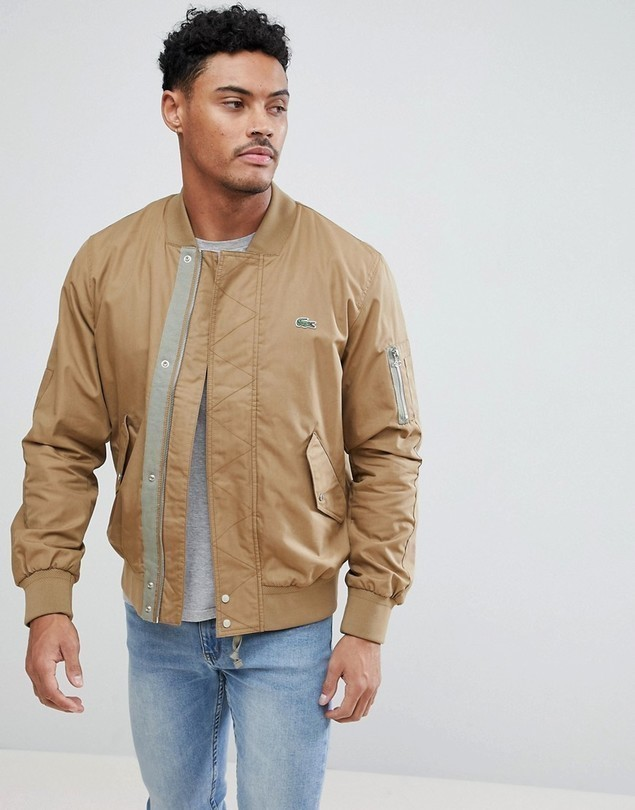 Lacoste Bomber Jacket In Tan - Tan