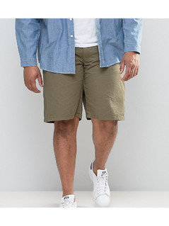 Loyalty and Faith PLUS Chino Shorts - Green