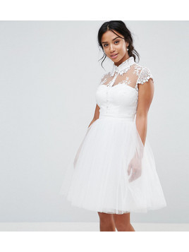 Chi Chi London Petite Mini Tulle Skater Dress With Lace Collar - White