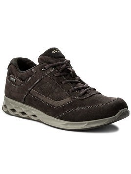 Sneakersy ECCO - Rigger Gtx GORE-TEX 83520458531 Licorice/Mocha