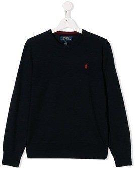 Polo Ralph Lauren embroidered logo jumper - Blue