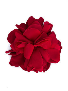Caffe' D'orzo Aria corsage brooch - Red