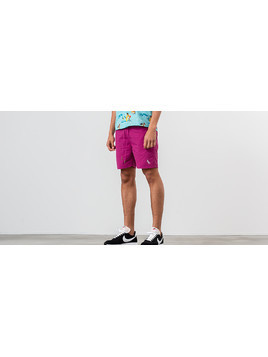 Aimé Leon Dore Monogram Nylon Shorts Boysenberry