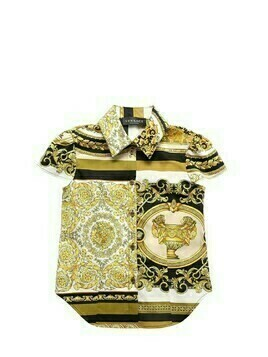 Baroque Print Cotton Poplin Shirt