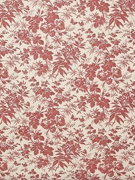 HERBARIUM PRINT WALLPAPER