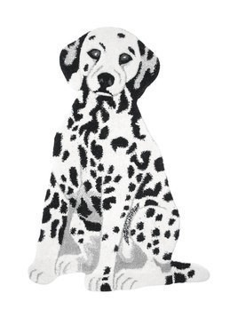 DALMATIAN WOOL & COTTON RUG