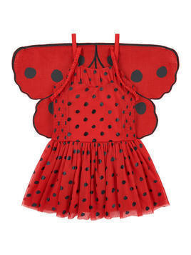 Ladybird dress with removable wings