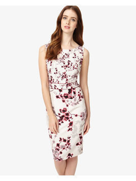 Phase Eight Hana Blossom Dress