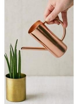 Roxy Rose Gold Mini Watering Can