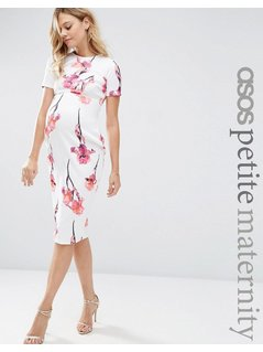 ASOS Maternity PETITE Scuba Pencil Dress In Red Floral - Multi